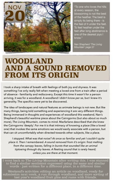 https://suziricher.com/2016/11/20/20-november-woodland-and-a-sound-removed-from-its-origin/